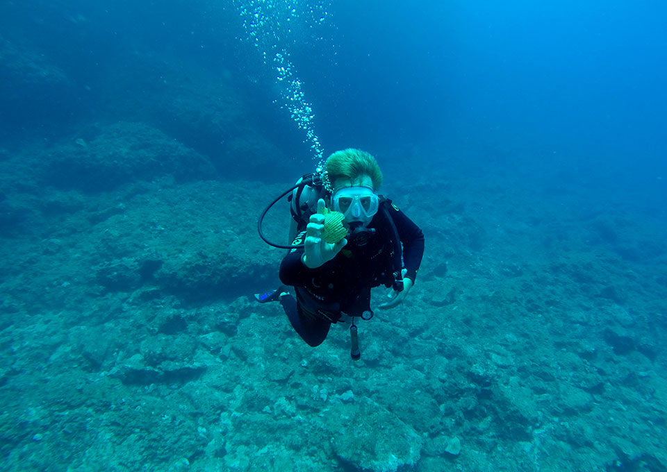 diving montenegro divemaster internship program